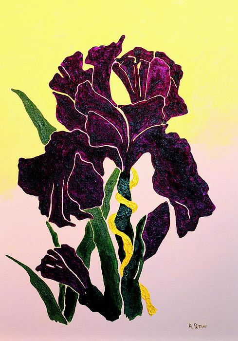 Iris Print by Andrew Petras