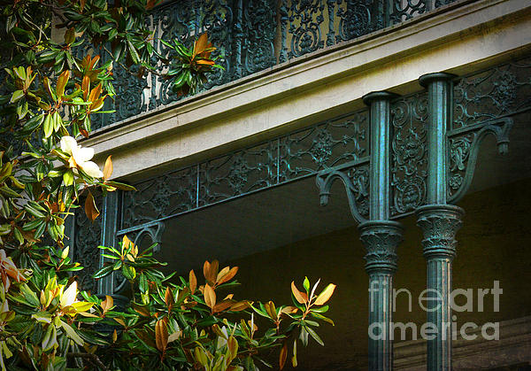 Iron Detail With Magnolia Tree Print by Jeanne  Woods
