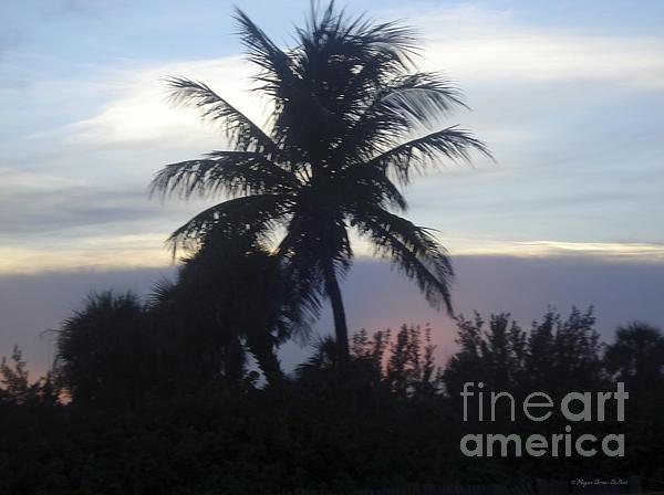 Island Sunset Print by Megan Dirsa-DuBois
