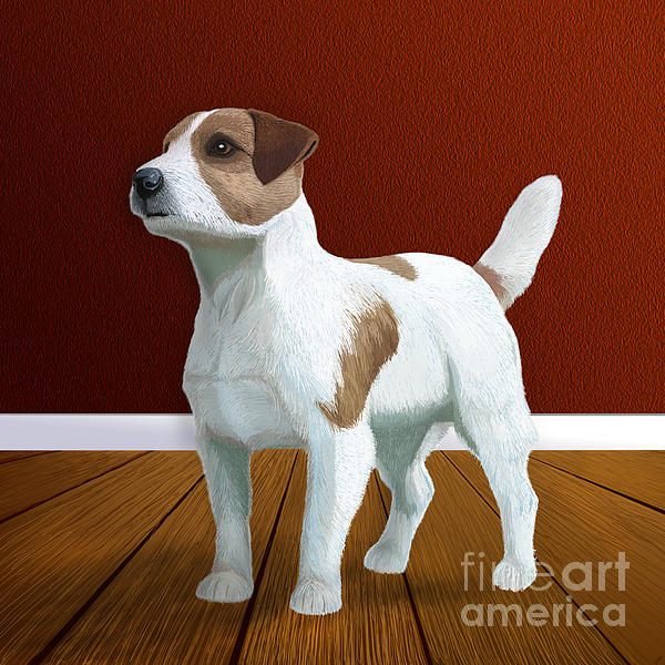 Jack Russell Terrier Portrait Print by Jacqueline Barden