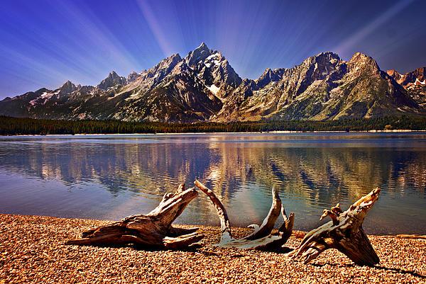 Jackson Lake Mt. Moran Print by Marty Koch