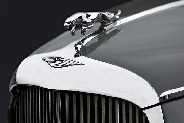 Jaguar Mk Ix Hood Print by Susan Candelario