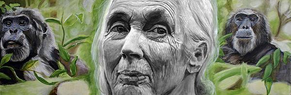 Jane Goodall Print by Simon Kregar