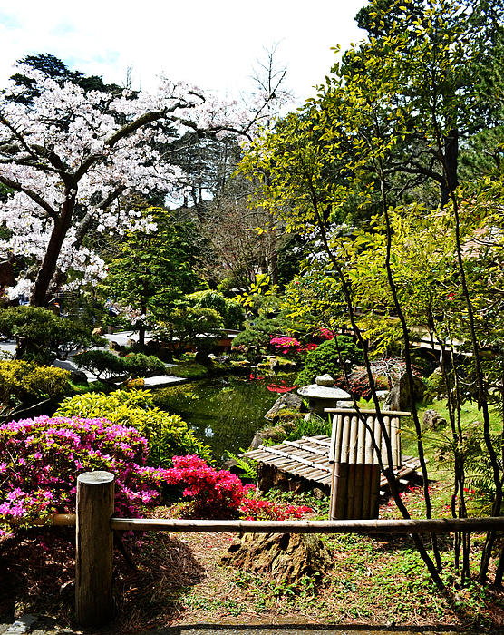 Japanese Gardens Print by Holly Blunkall