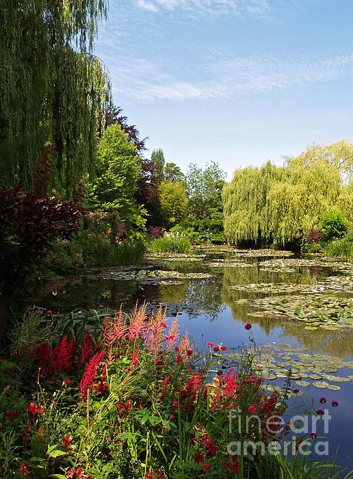 Jardin D'eau Print by Alex Cassels