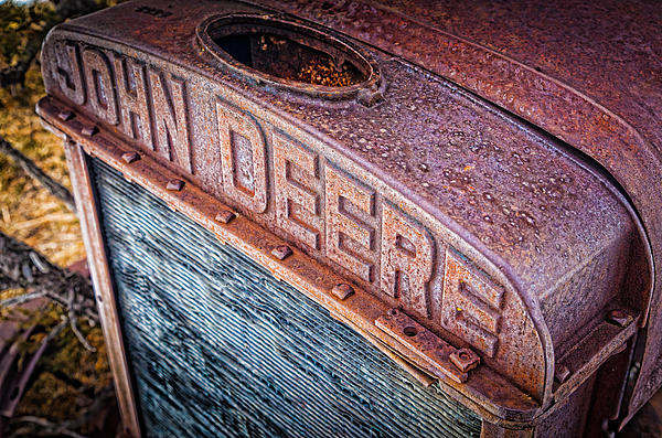 Jd Grille Print by Inge Johnsson