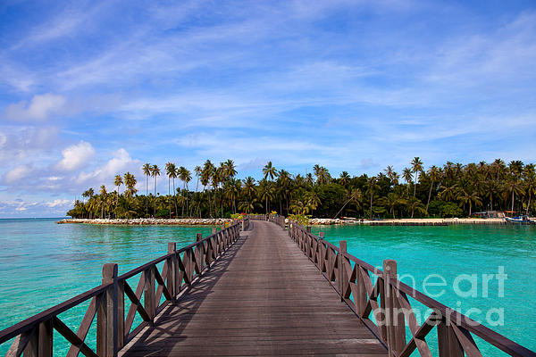 Jetty On Tropical Island Print by Fototrav Print