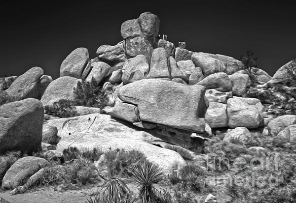 Joshua Tree - 15 Print by Gregory Dyer