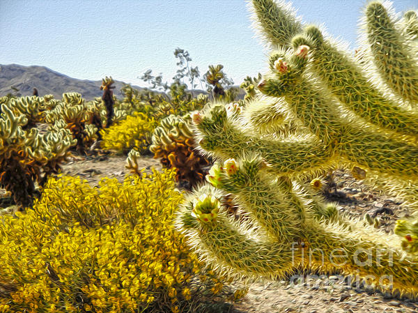 Joshua Tree Cholla Cactus Garden Print by Gregory Dyer