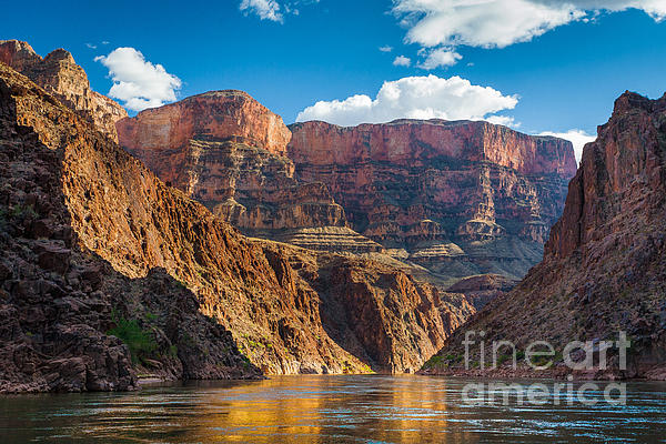 Journey Through The Grand Canyon Print by Inge Johnsson