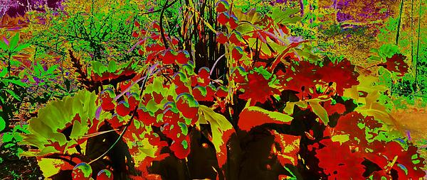 Jungle Abstract Print by Mike Breau