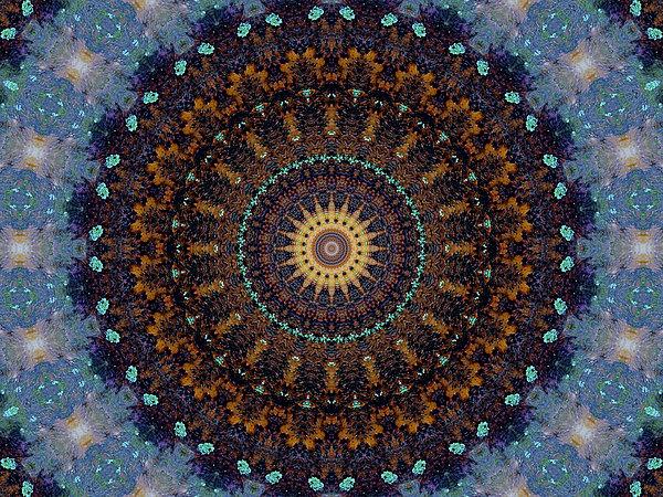 Kaleidoscope 1 Print by Tom Druin
