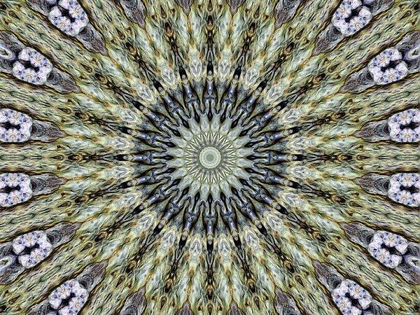Kaleidoscope 6 Print by Tom Druin