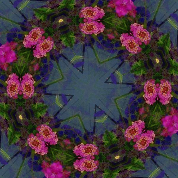 Kaleidoscope Lantana Wreath Print by Cathy Lindsey