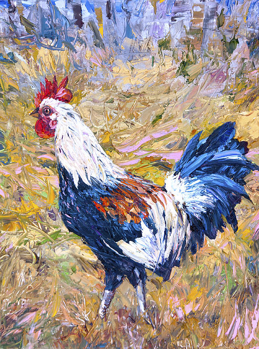 Kapaa Rooster Print by Steven Boone