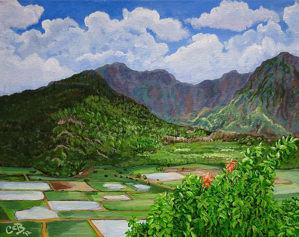 Kauai Taro Fields Print by Chad Berglund