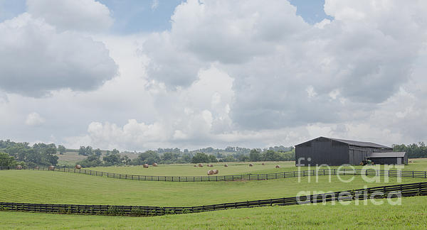 Kentucky Farm Print by Kay Pickens