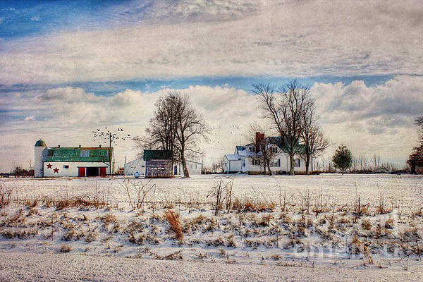 Kentucky Snow Day Print by Darren Fisher