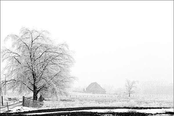 Kentucky Winter  Print by Wendell Thompson