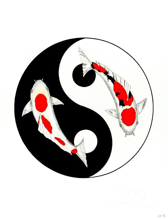 koi kohaku and taisho sanke yin yang painting by gordon lavender. Black Bedroom Furniture Sets. Home Design Ideas