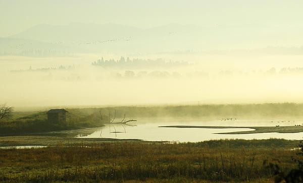 Kootenai Dawn Print by Annie Pflueger