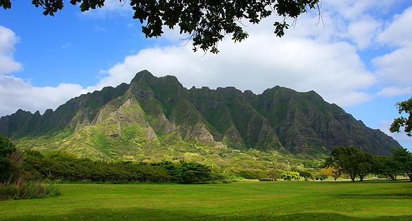 Kualoa Park Hawaii Print by Kevin Smith