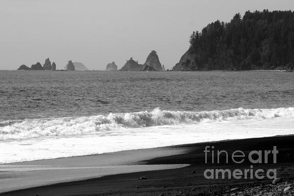 La Push Beach Black And White Print by Carol Groenen