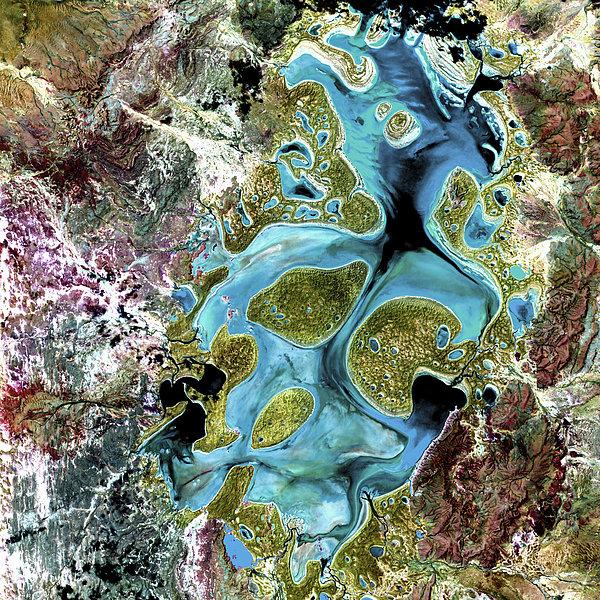 Lake Carnegie Western Australia Print by Adam Romanowicz