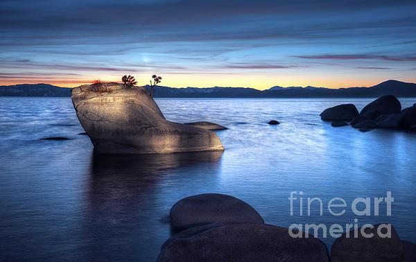 Lake Tahoe Bonsai Rock Print by Dianne Phelps