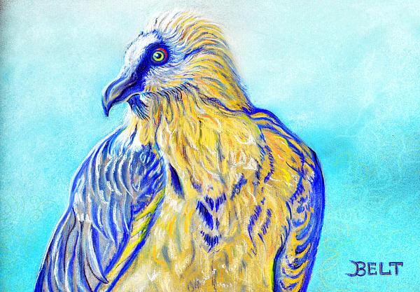 Lammergeier Vulture Print by Christine Belt