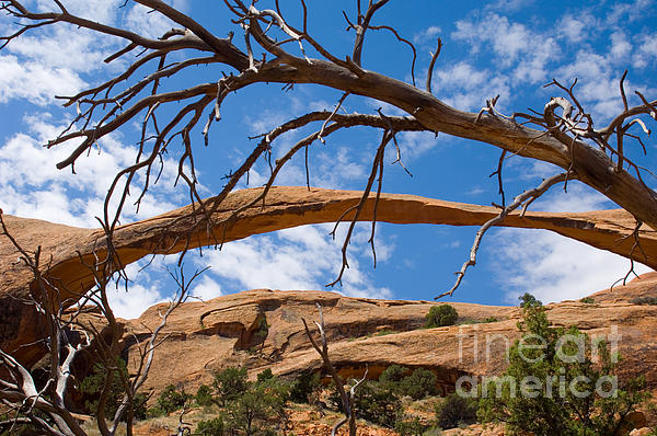 Lee Roth - Landscape Arch - Arches National Park