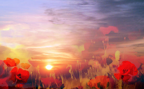 Valerie Anne Kelly - Landscape of dreaming Poppies