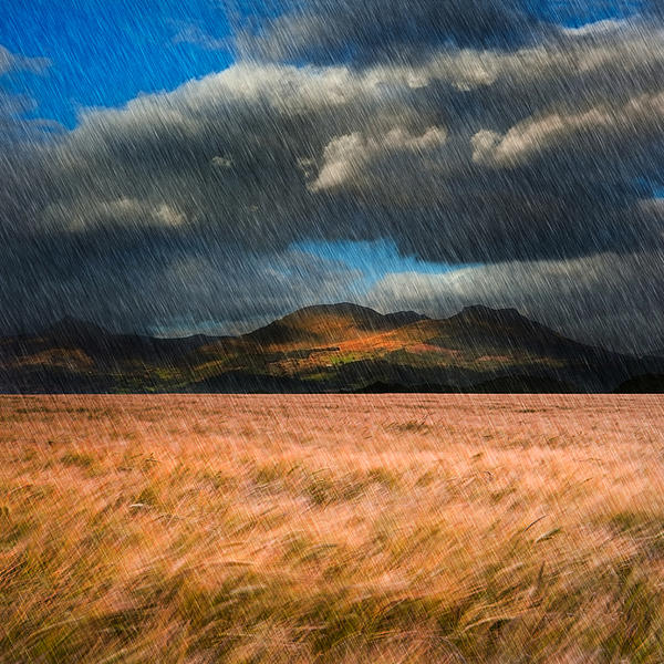 Landscape Of Windy Wheat Field In Front Of Mountain Range With D Print by Matthew Gibson