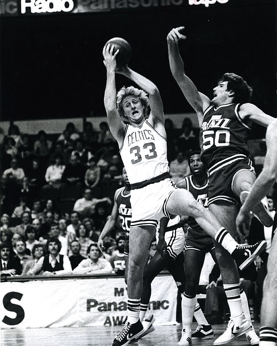 Larry Bird Print by Retro Images Archive