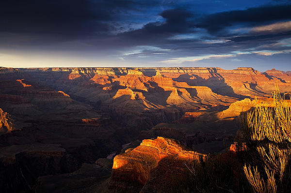Last Light In The Grand Canyon Print by Andrew Soundarajan