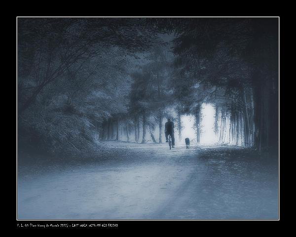 Last Walk With My Old Friend Print by Pedro L Gili