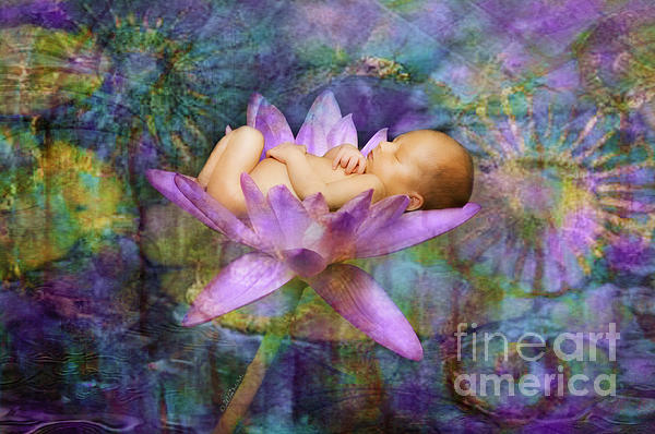 MiMi Milagros Photography - Lavendar Lotus Dream Baby