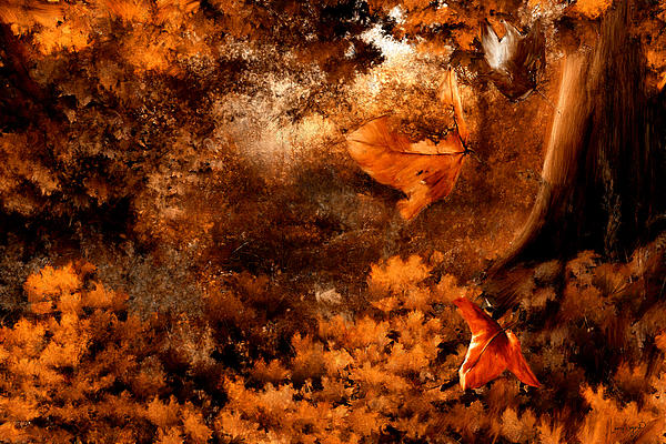Leaves Of Gold Print by Lourry Legarde