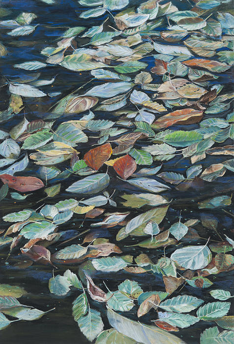 Nick Payne - Leaves on Pond
