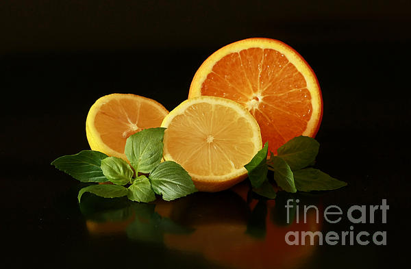 Lemon And Orange Delight Print by Inspired Nature Photography By Shelley Myke