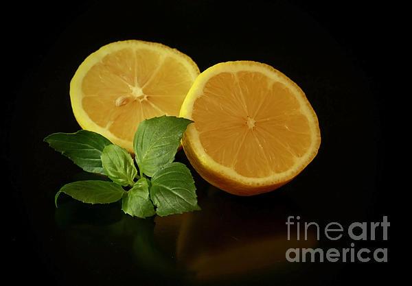 Lemon Splendor Print by Inspired Nature Photography By Shelley Myke