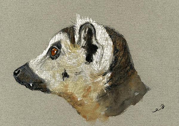 Lemur Head Study Print by Juan  Bosco