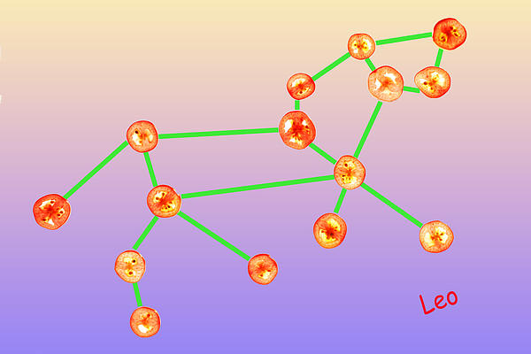 Leo Constellation Composed By Tomato Slices Food Art Print by Paul Ge