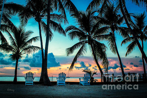 Rene Triay Photography - Life in the Tropics