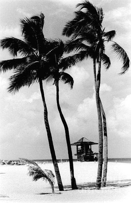 Lifeguard Hut Print by Gary Gingrich Galleries