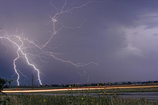 Lightning Thunderstorm Dragon Print by James BO  Insogna