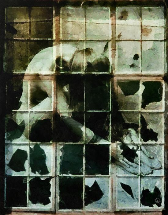 Like A Broken Window Print by Gun Legler