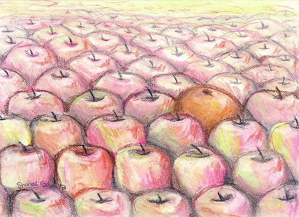 Like Apples And Oranges Print by Shana Rowe