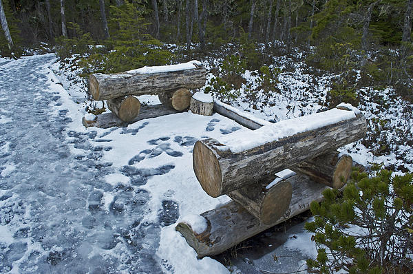 Cathy Mahnke - Lincoln Log Benches