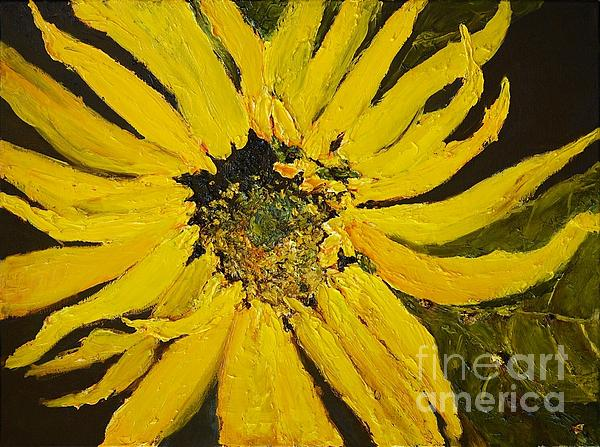 Linda's Arizona Sunflower 2 Print by Sherry Harradence
